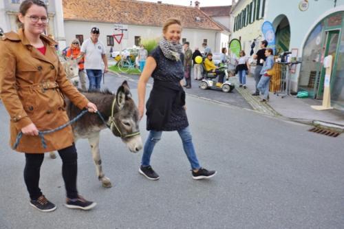 200919 reparatur cafe trifft mobilitaet fotocredit KEM Naturpark Pöllauer Tal (4)